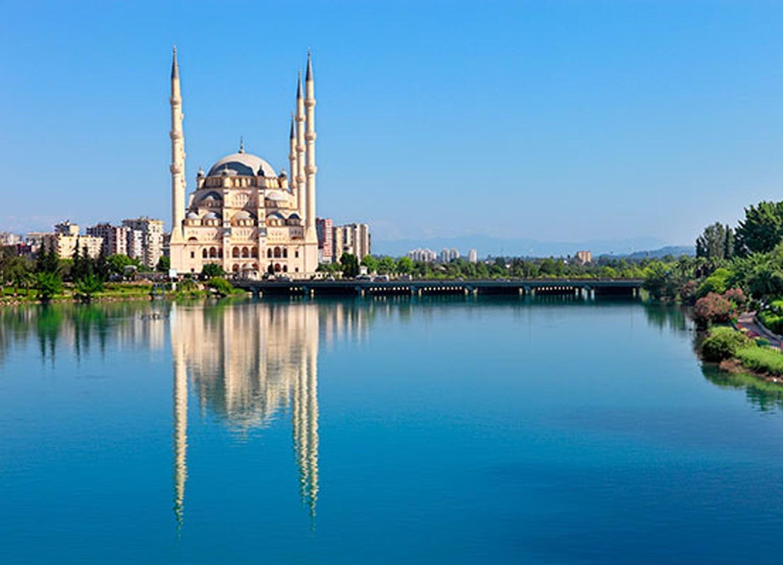 شركة تصميم مواقع في أضنة تركية